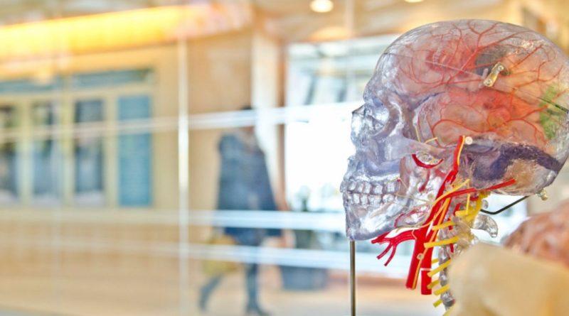 """Descoperire fabuloasă! Creierul nu moare în același timp cu omul, ci continuă să mai """"trăiască"""" o vreme"""