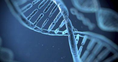 ADN ul poate fi editat